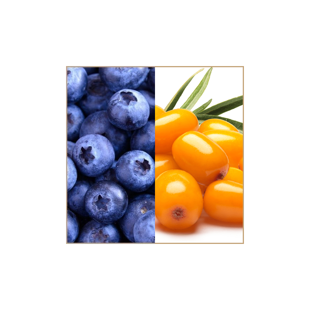 Blåbær & Havtorn balsamico